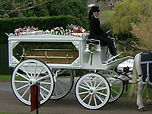 horse drawn funeral white somerset