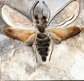 """Felted Moth"""
