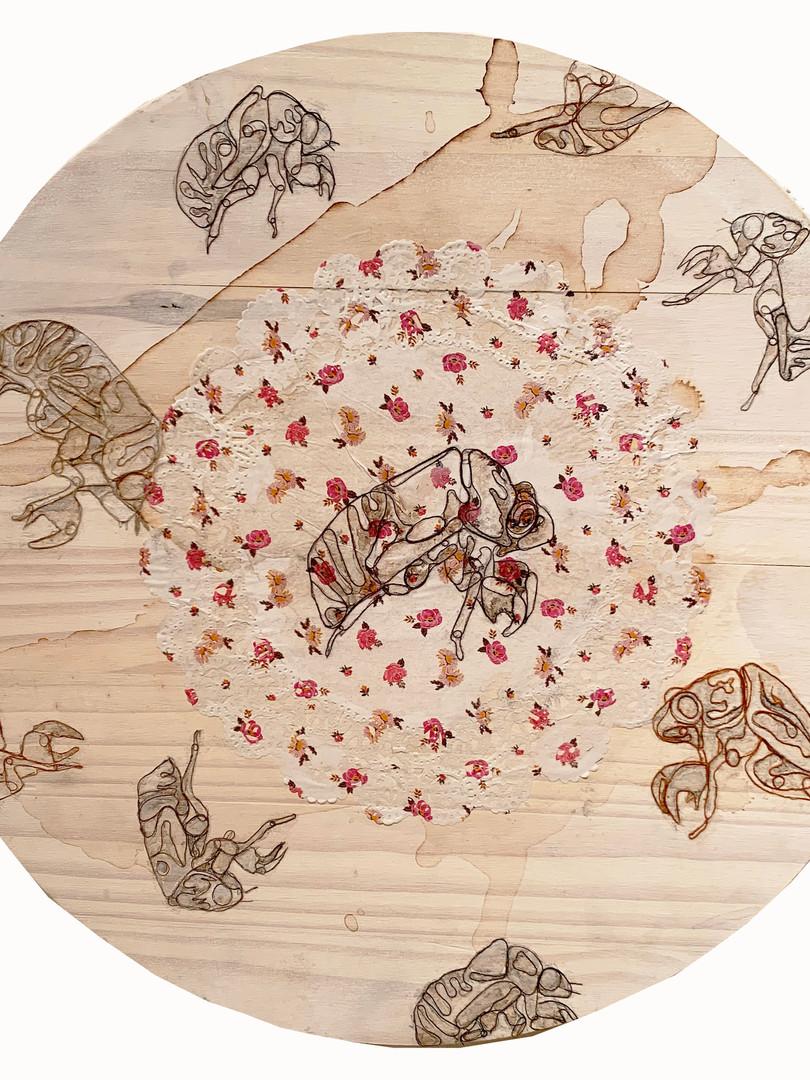 07. Caitlin Gill. cicadas in the round.j
