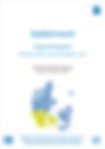 Syddanmark_Regionsrapport2017_forside.pn