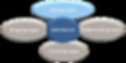 organisationsdiagram.png