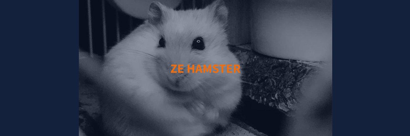 ze hamster banner.jpg