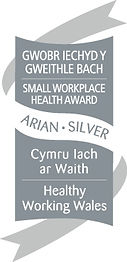 Silver Small Workplace Health Award