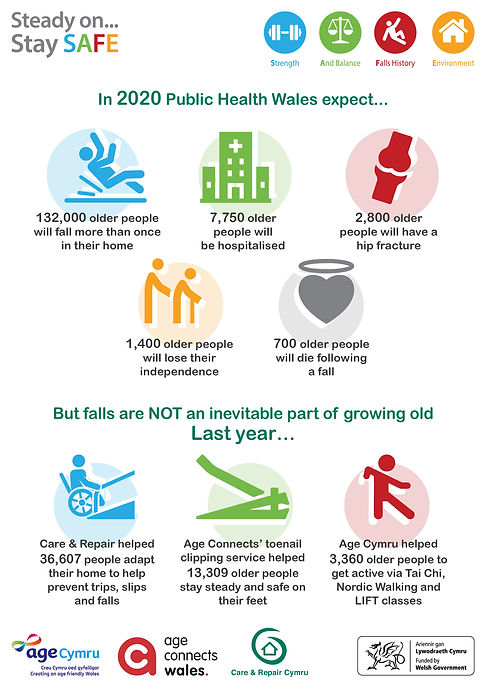 Falls Prevention Infographic1 English.jp