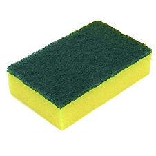 Sponge & Scourer.jpg