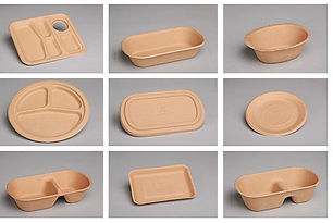 Bagasse Food Containers.jpg