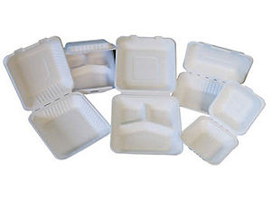 Biodegradable-Bagasse-Food-Containers.jp