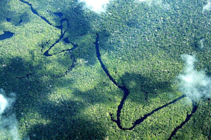 Iniciativas para o enfrentamento da pandemia e promoção dos ODS são destaques da SDSN Amazônia