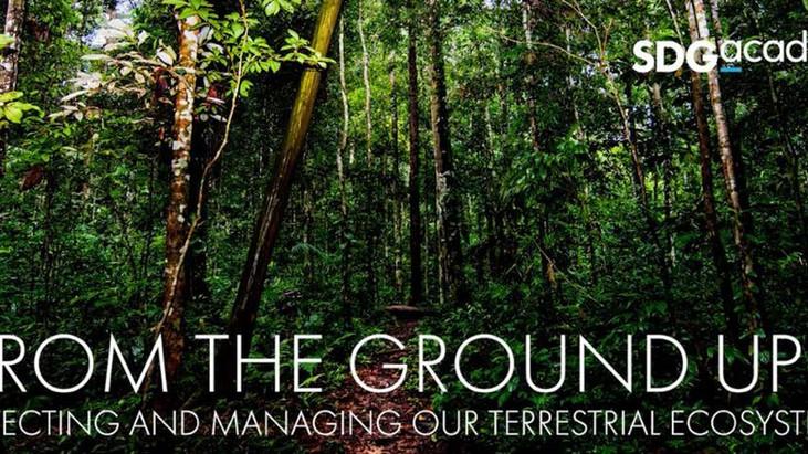 Curso online e gratuito sobre sustentabilidade e ecossistemas terrestres tem prazo final de inscriçõ