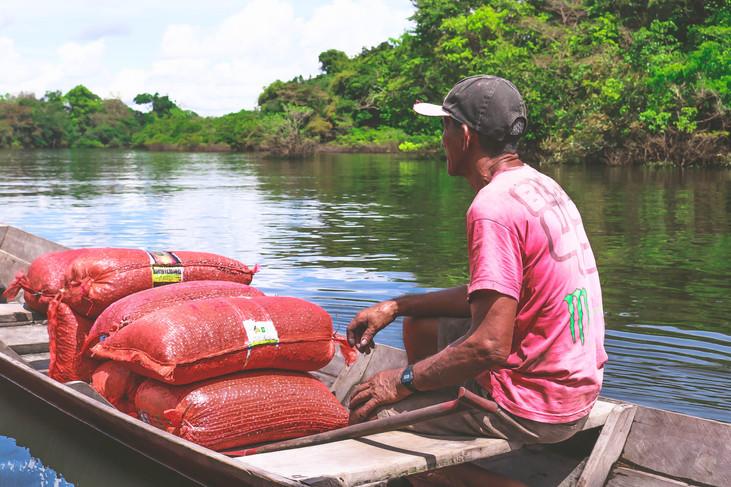 Amazon Day debate soluções para impulsionar economia verde na Amazônia