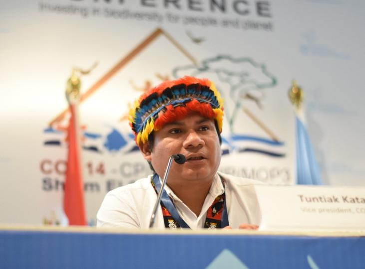 Estratégias e soluções para enfrentamento à Covid-19 na Pan-Amazônia são temas de webinar