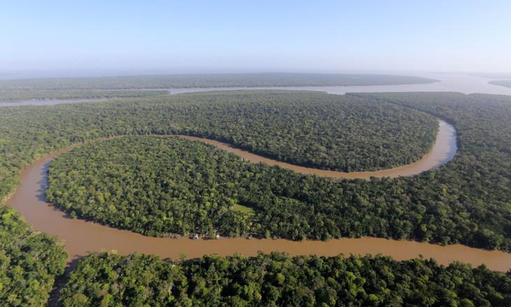 Soluções sustentáveis para Amazônia são apresentadas em webinar global sobre felicidade e sustentabi
