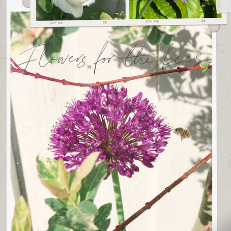 WEEKEND DIARY | IN THE GARDEN
