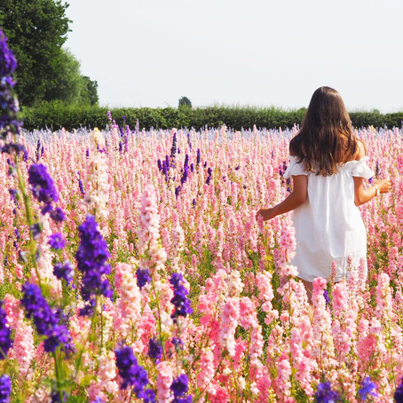 OUT + ABOUT | THE REAL FLOWER CONFETTI FIELDS