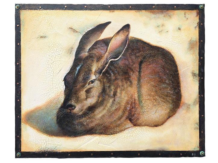 Resting hare.jpg