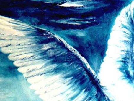 Tati Eckhardt: Meu Anjo da Sorte