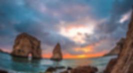 2019 رحلات بيروت
