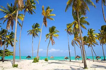 beach_in_zanzibar_kendwa_beach.jpg