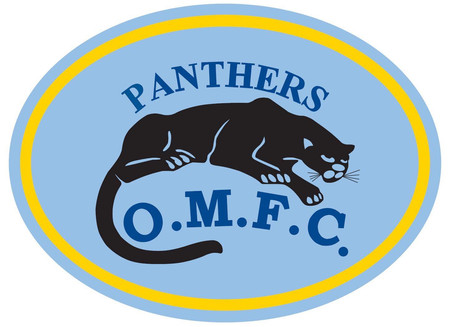 Panthers into Grand Final and earn promotion to Premier C!