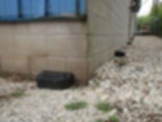 Estaciones de carnada para roedores alrededor de un edificio.
