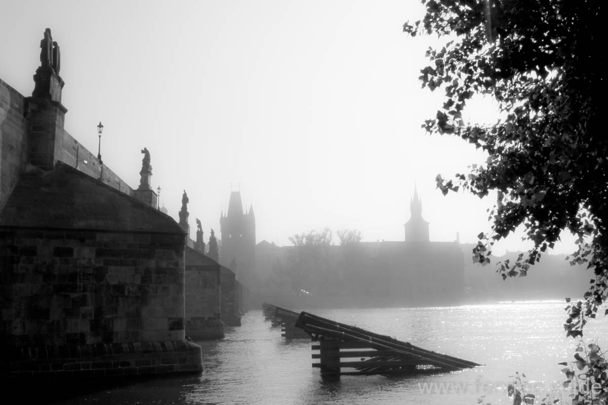 morning by charles bridge