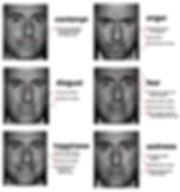 Lie to me Universa Faces.jpg