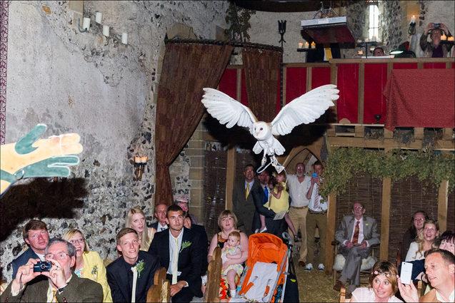 Owl flys into church wedding