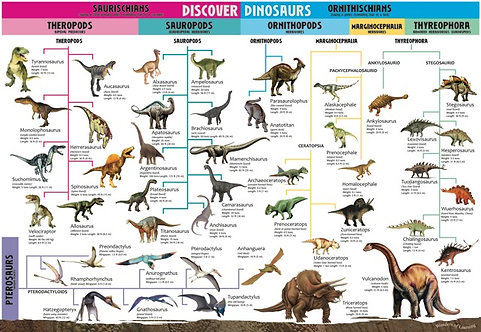 Discover Dinosaurs Educational Wall Chart