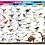 Thumbnail: Wonders of Learning Model Set - Dinosaurs