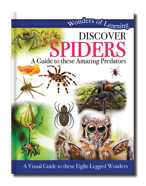 Discover Spiders