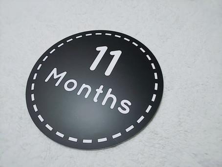 11月の如月心理相談室