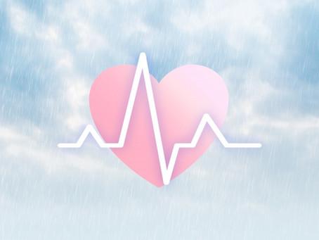 BTI-J主催 WS『心と体でつながる「新しい」共感実践』