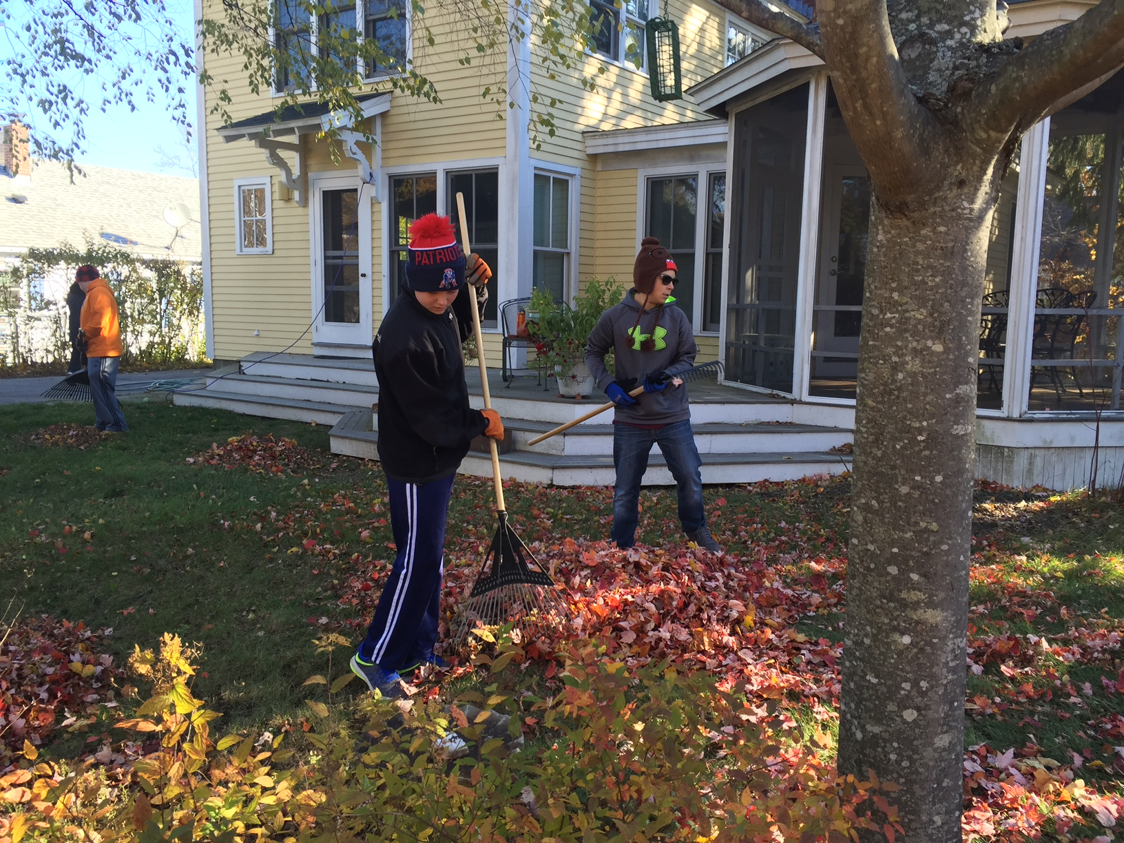 Leaf Raking 2016
