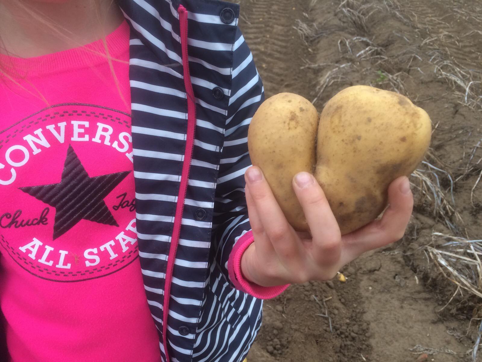 2019_20_September_Ausflug Kl3 Kartoffelh
