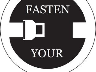"""ECONOMIC COMMENT - """"Fasten Your Seatbelt"""""""