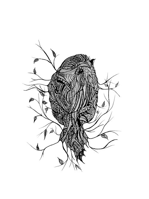 """Line Drawing Sparrow 8 x 10"""""""