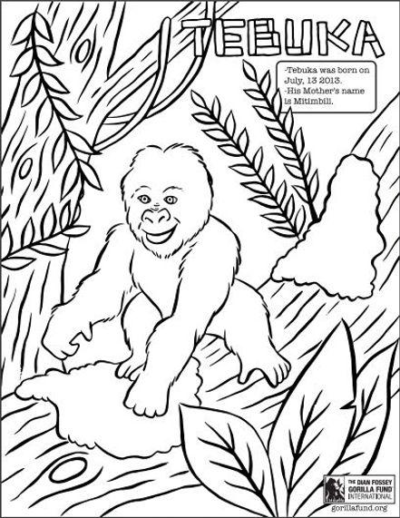 Gorilla Coloring Page.JPG