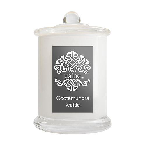 Cootamundra Wattle - 70 hours