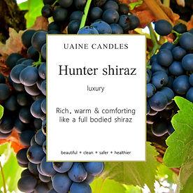Hunter Shiraz_SQUARE.jpg