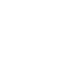 logo_Enamor_blanco.png