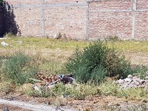 El viernes vence el plazo para limpiar terrenos baldíos