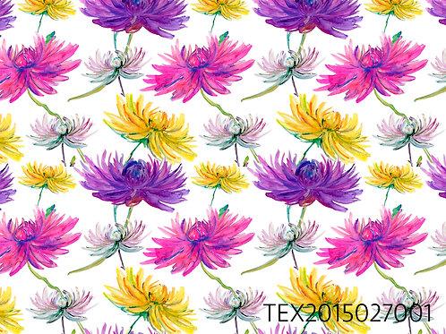 TEX2015027001