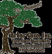 Arbor Care Logo_No background.png