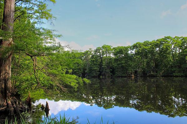 Curry Lake(1).jpg