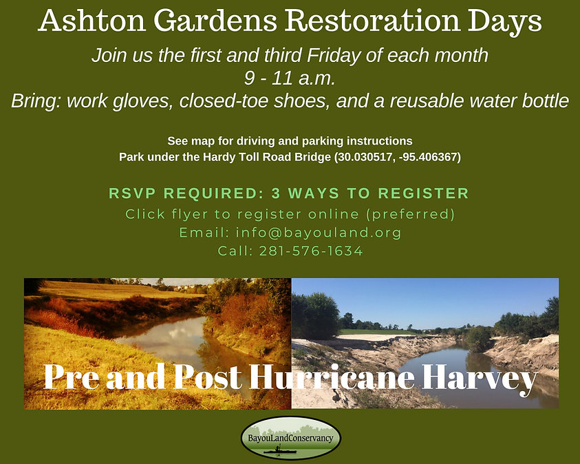 Ashton Gardens Restoration Day Flyer.jpg