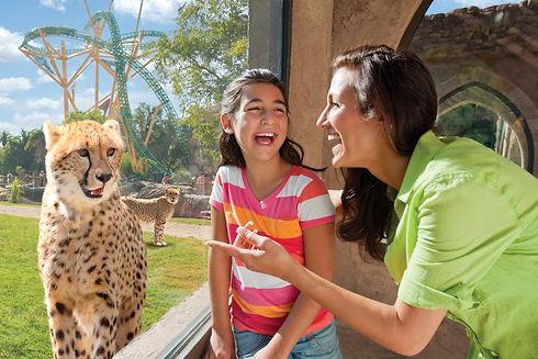 Busch Gardens 2.jpeg
