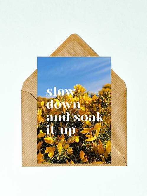 Slow Down Greetings Card