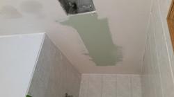 Bathroom ceiling skinned