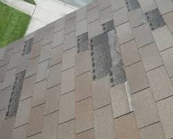 Shingles Replaced (10)
