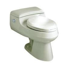 Whole Toilet or Flush/Fill Components Replaced